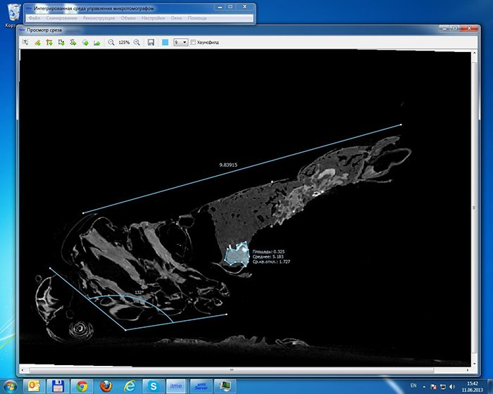 Tomography application windows interface cut